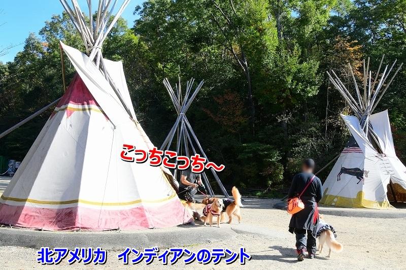 DSC_1737インディアンのテント