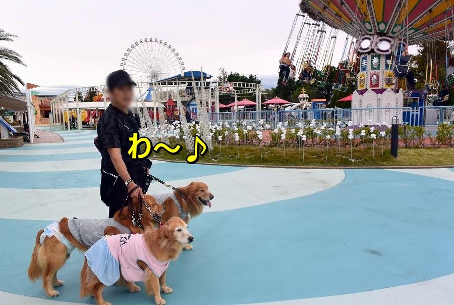 DSC_7829わ~yuuenntihe