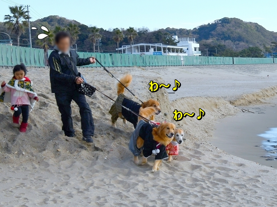 DSC_2591わ~