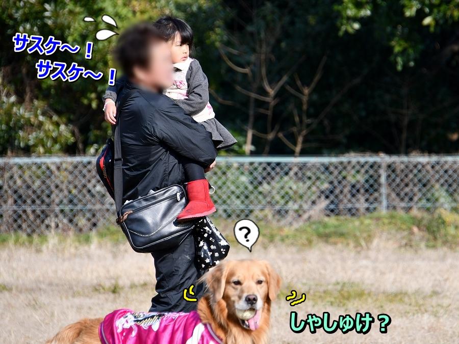 DSC_2743サスケ~!