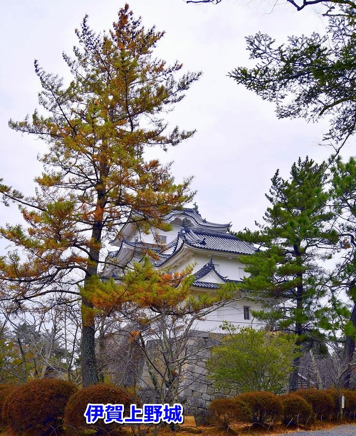 DSC_2976上野城が見えてきました