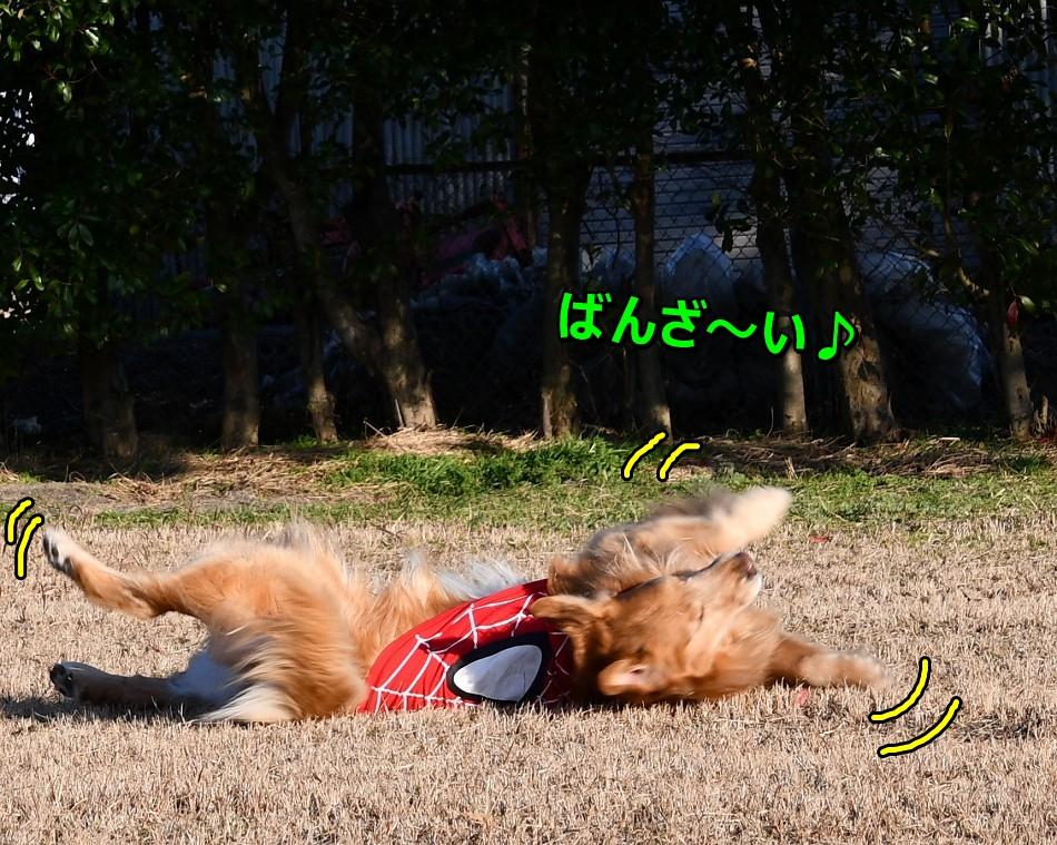 DSC_3502ばんざ~い