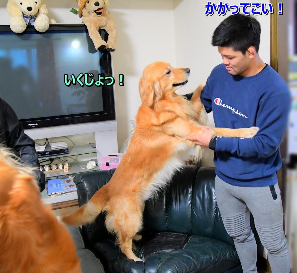 DSC_4364いくじょ~