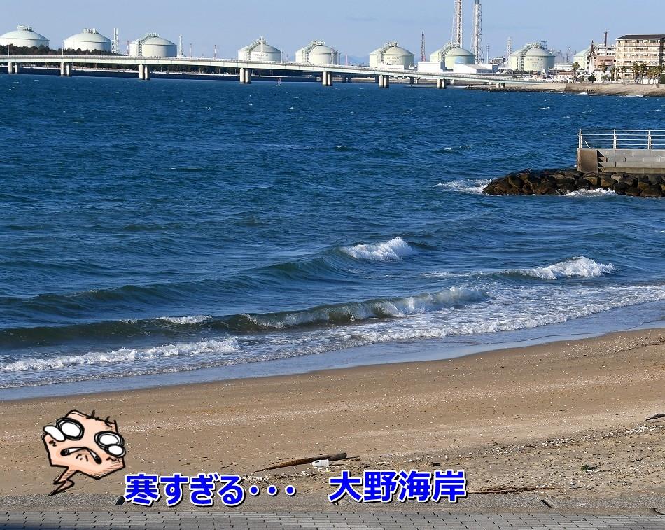 DSC_3466_20200208203119cc0.jpg