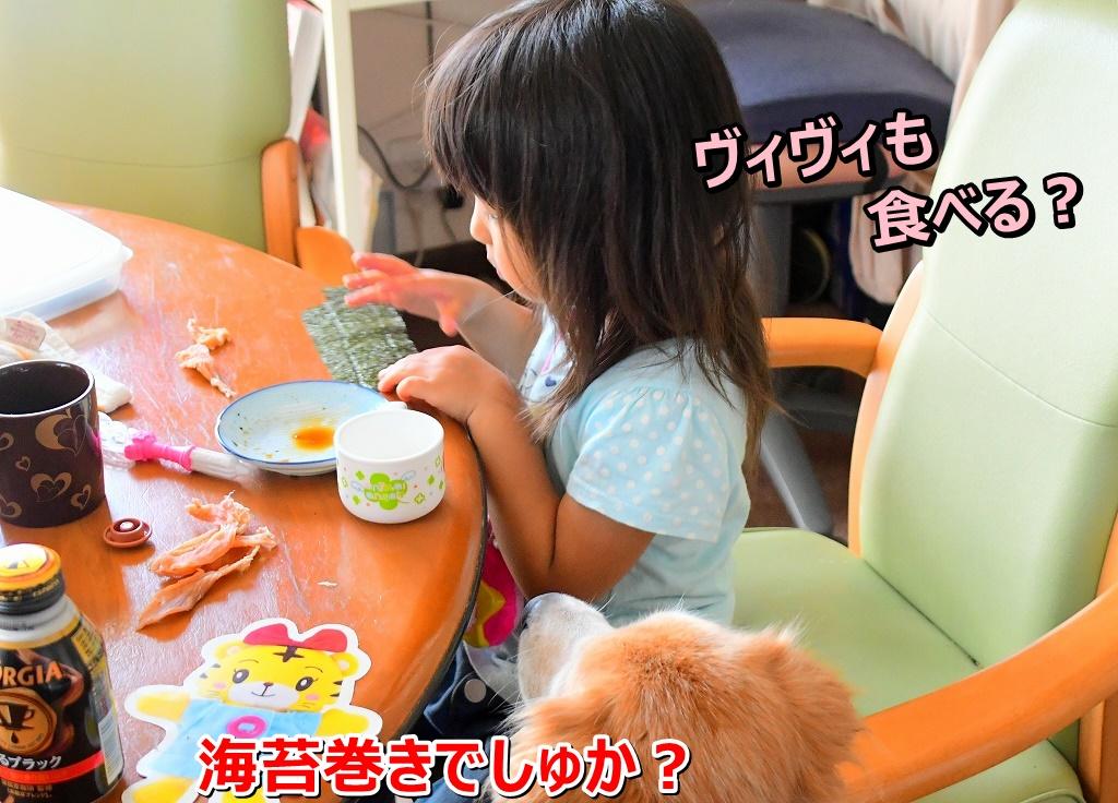 DSC_9669_20191114202143d71.jpg