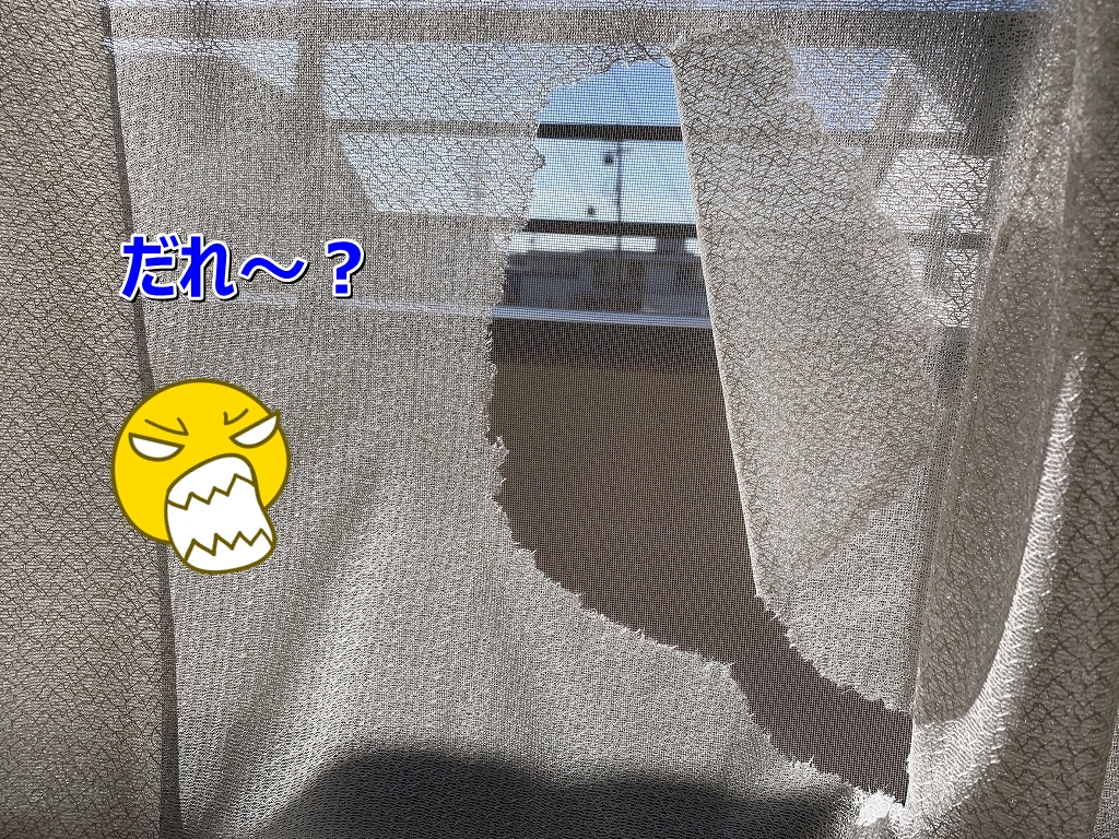 S__4866106.jpg