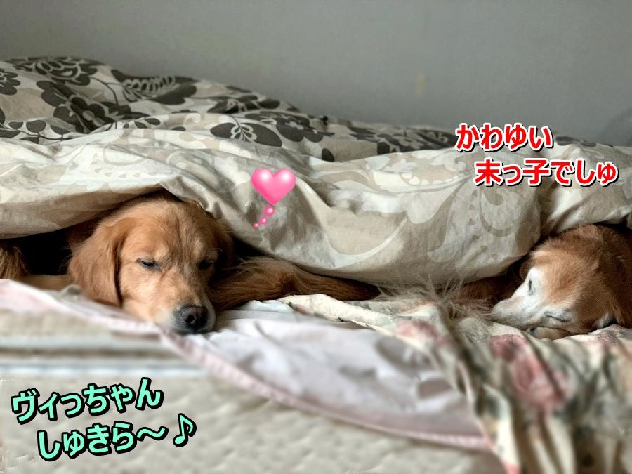 S__5005346.jpg
