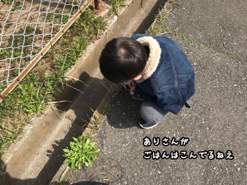 fc2blog_202004181630507b2.jpg