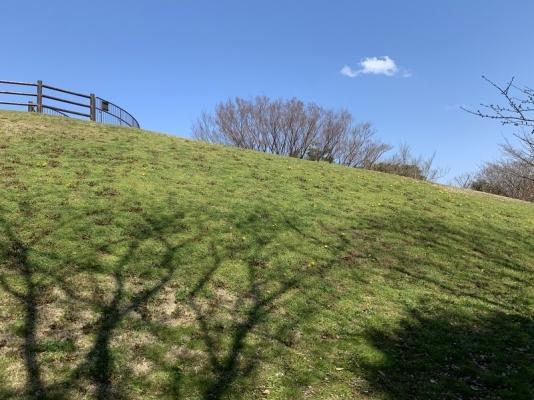 本牧山頂公園2020 iPhone10