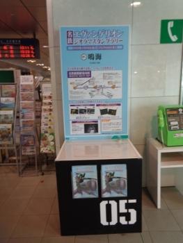 DSC03646.jpg