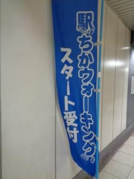 DSC08576.jpg