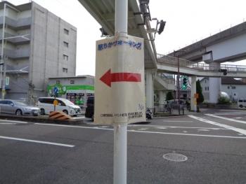 DSC08579.jpg