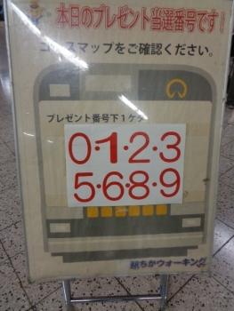 DSC08698.jpg