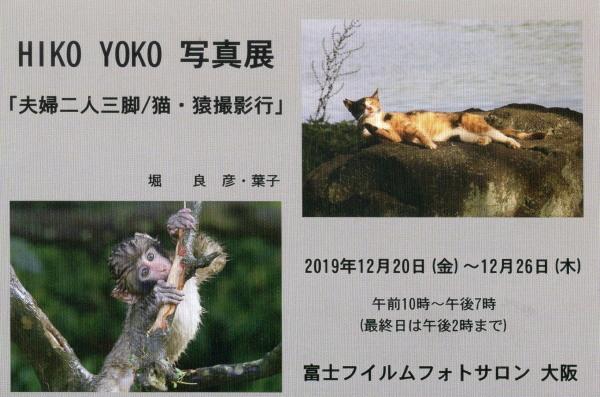 hikinoko