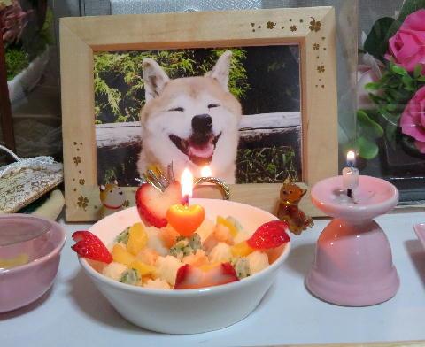 ケーキ 4