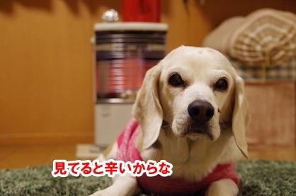 焼き芋 4
