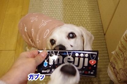 ホットチョコレート 7