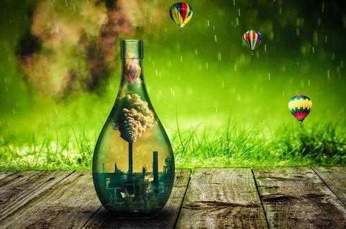 ecology-4604808_960_720.jpg