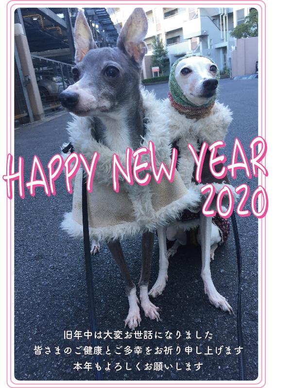 年賀20a_blog