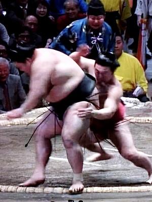 炎鵬・豪栄道戦2001