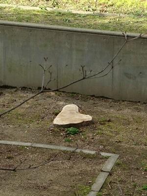 伐木ハート2002