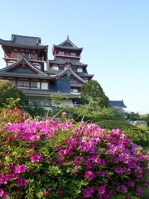桃山城のツツジ2005