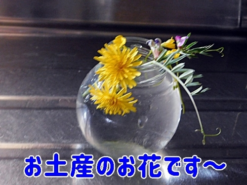 お土産のお花