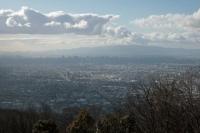 BL200228高井田~生駒山3-4IMG_3105
