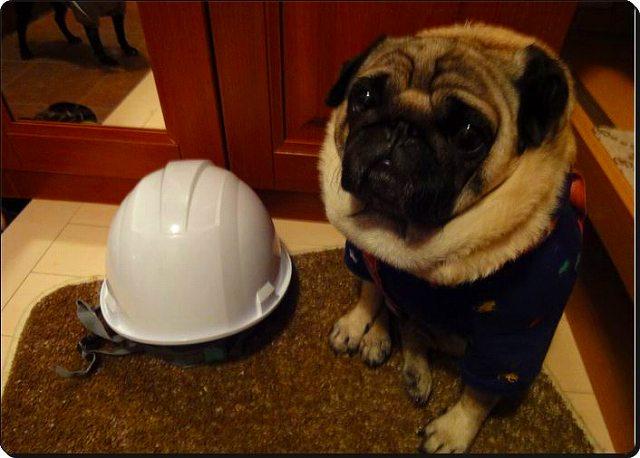 震災ヘルメット