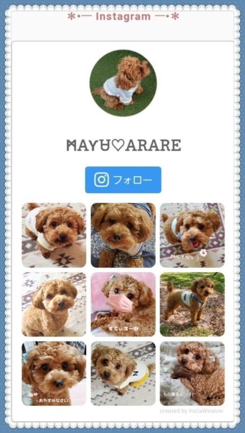 Lblog49.jpg