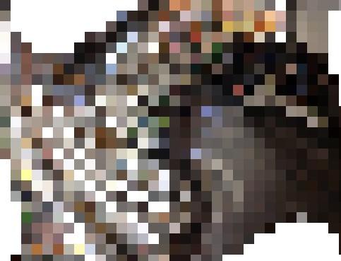 20200216b