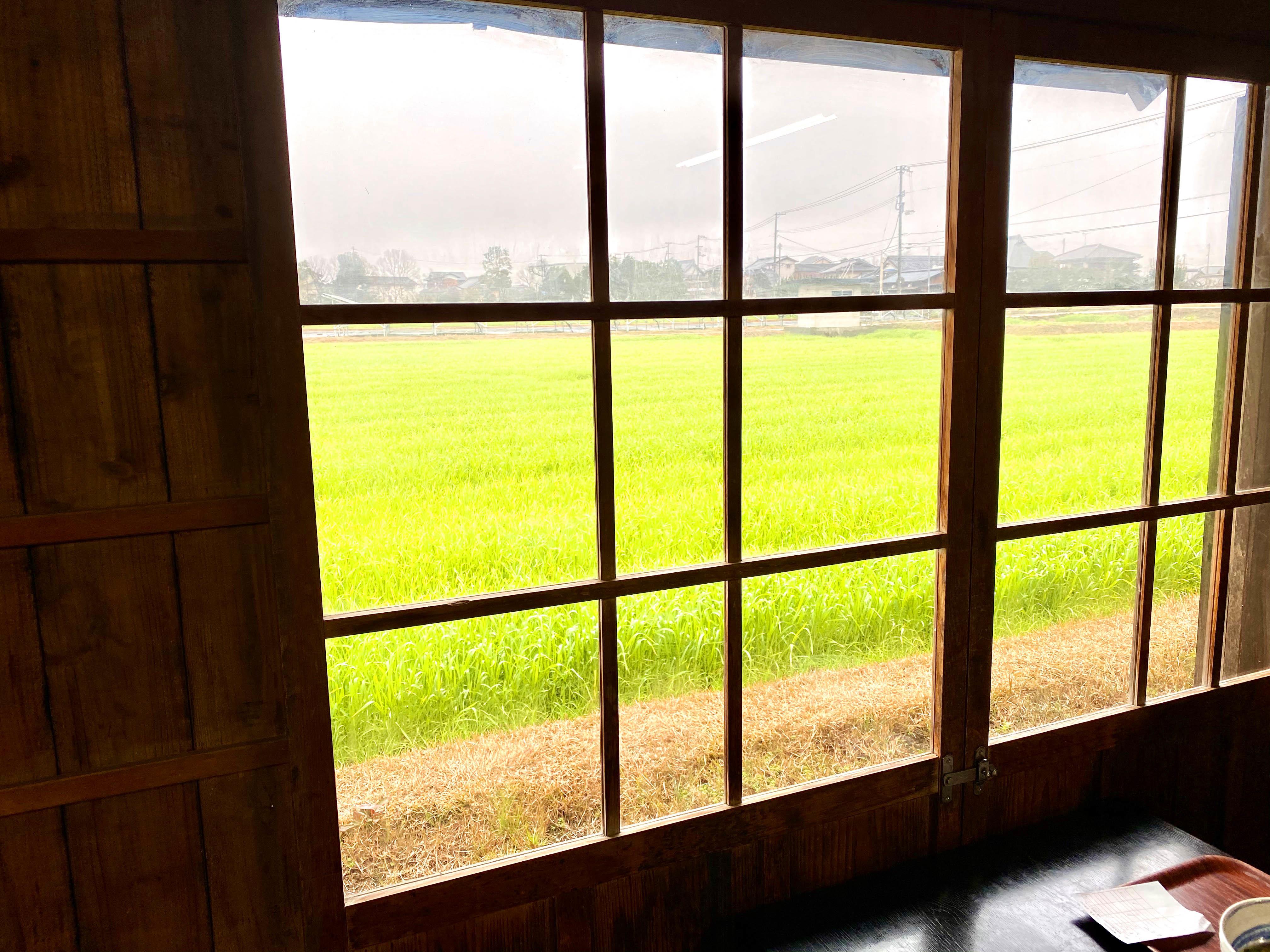 納屋からの風景