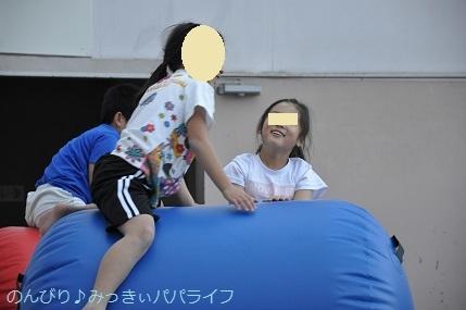 acrobat201903.jpg