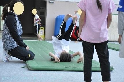 acrobat201904.jpg