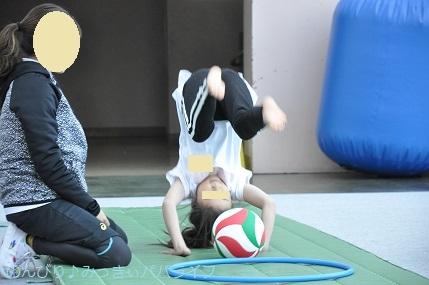 acrobat201906.jpg