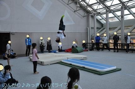 acrobat201915.jpg