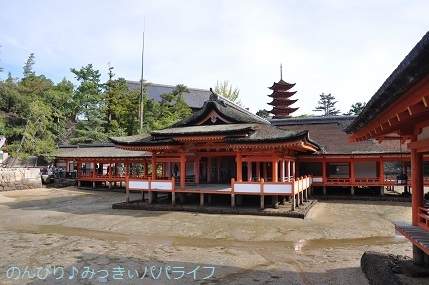hiroshima201910056.jpg