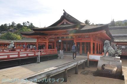 hiroshima201910058.jpg