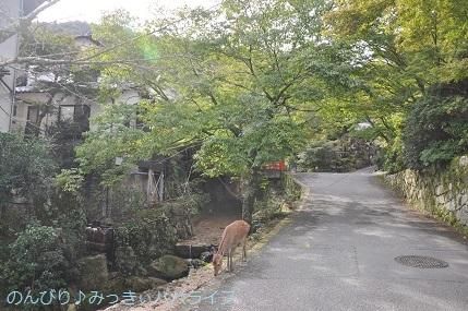 hiroshima201910070.jpg
