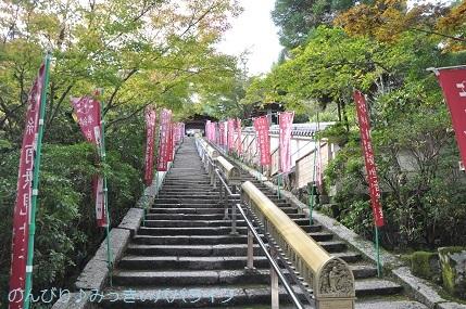 hiroshima201910075.jpg