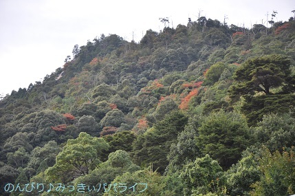 hiroshima201910080.jpg