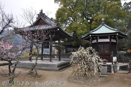 hiroshimayamaguchi202002037.jpg