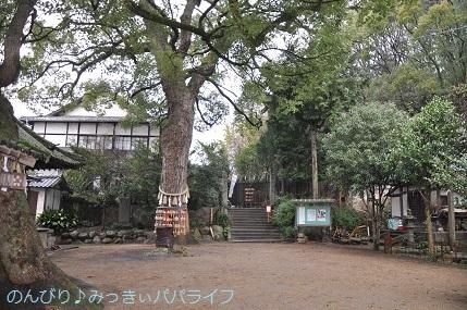 hiroshimayamaguchi202002041.jpg