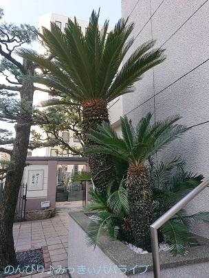 hiroshimayamaguchi202002111.jpg
