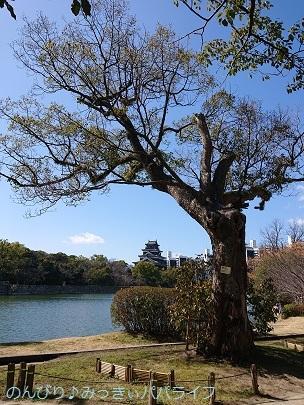 hiroshimayamaguchi202002142.jpg