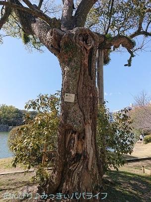 hiroshimayamaguchi202002143.jpg
