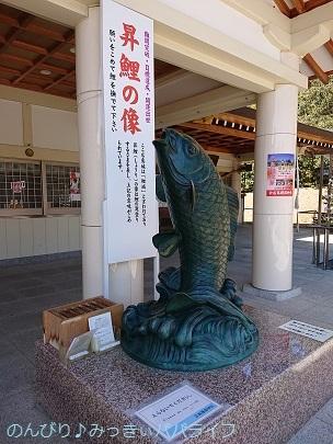 hiroshimayamaguchi202002147.jpg