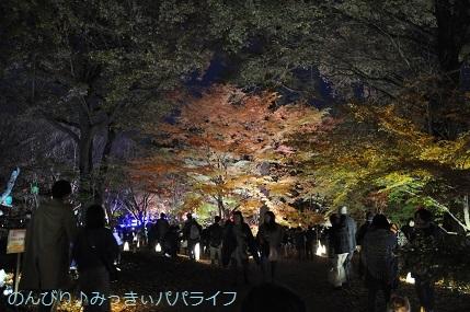 momijiminaito201912.jpg