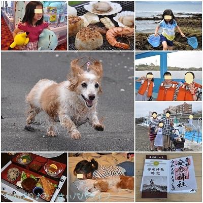 tateyama201907146-1.jpg