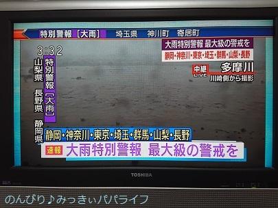 typhoon1902.jpg